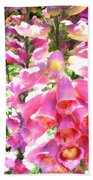 Spikes Of Pink Foxgloves Beach Towel