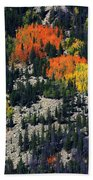 Splashes Of Fall Beach Towel