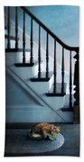 Spooked Cat By Stairs Beach Towel