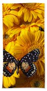 Spotted Butterfly On Yellow Mums Beach Towel