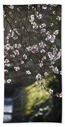 Spring Blossom Beach Towel