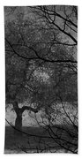 Spring For Leaves  Beach Towel
