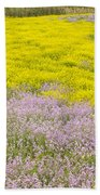 Spring In Spain Beach Towel