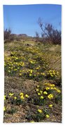 Spring Surprise Franklin Mountains Beach Towel