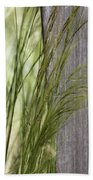 Spring Time In The Meadow Beach Towel