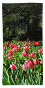 Spring Tulips 1 Vertical Beach Towel