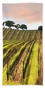 Spring Vineyard Beach Towel