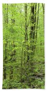 Spring Woods Beach Towel