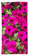 Springtime Flowers Beach Towel