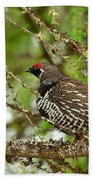 Spruce Grouse Beach Towel