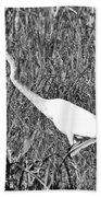 Stalking Egret Beach Towel