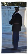 Standing Guard  Beach Towel