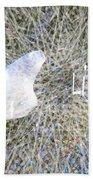 Star Hip 71044  Beach Towel by Augusta Stylianou