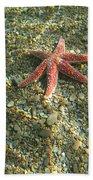 Starfish In Shallow Water Beach Towel