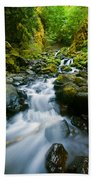 Starvation Creek Falls Beach Towel