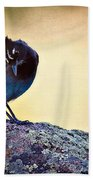 Stellers Rock Beach Towel