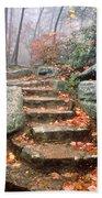 Steps Cloudland Canyon Beach Towel