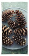 Stil Life With  Seven Pine Cones Beach Towel