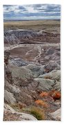 Stormy Morning At Petrified Forest  Beach Towel