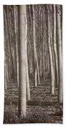 Straight Trees Beach Towel