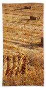 Straw Field Beach Towel