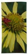 Strawberry Moth On A Yellow Flower Beach Towel
