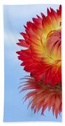 Strawflower Reflection Beach Towel