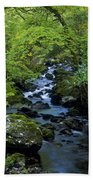 Stream Flowing Through A Forest Beach Towel