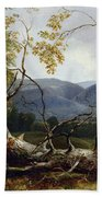 Study From Nature - Stratton Notch Beach Towel