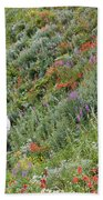 Subalpine Wildflowers Beach Towel