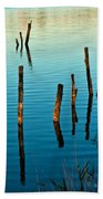 Submerged Trees At Sunset Beach Towel