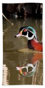 Sucarnoochee River - Suspicious Wood Duck Beach Towel