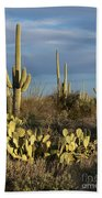 Suguaros At Sunset Beach Towel