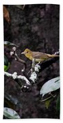 Summer Tanager Lady Beach Towel