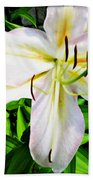 Summer White Madonna Lily Beach Towel