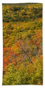 Summit Peak Autumn 6 Beach Towel