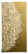 Sun Sparkled Dandy Beach Towel