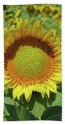 Sunflower And Honeybee July Two K O Nine Beach Towel