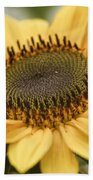 Sunflower Bloom Beach Towel