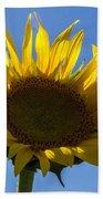 Sunflower For Snack Beach Towel