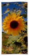 Sunflower Through A Glass Eye Beach Towel