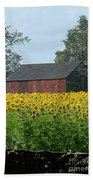 Sunflowers 8 Beach Towel