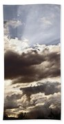 Sunlight And Stormy Skies Beach Towel by Mick Anderson
