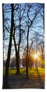 Sunlight Between The Trees Beach Towel