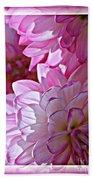 Sunlight Through Pink Dahlias Beach Towel by Carol Groenen