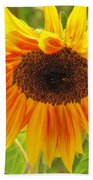 Sunny Bright Sunflower Beach Towel