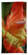 Sunny Glads Beach Towel by Susan Herber