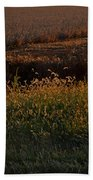 Sunrise On Wild Grasses II Beach Towel