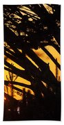Sunset In The Trees Beach Towel