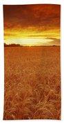 Sunset Over Wheat Field Beach Towel